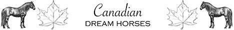 https://canadian-dream-horses.ch