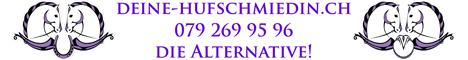 www.deine-hufschmiedin.ch