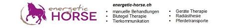 www.energetic-horse.ch