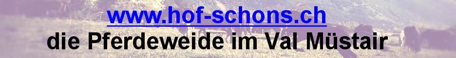http://www.hof-schons.ch/